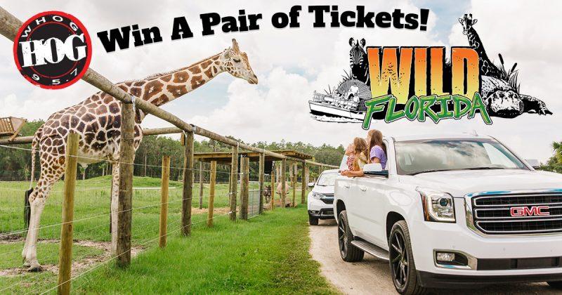 Safari at Wild Florida